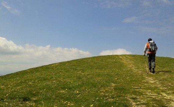 Monte Zogo