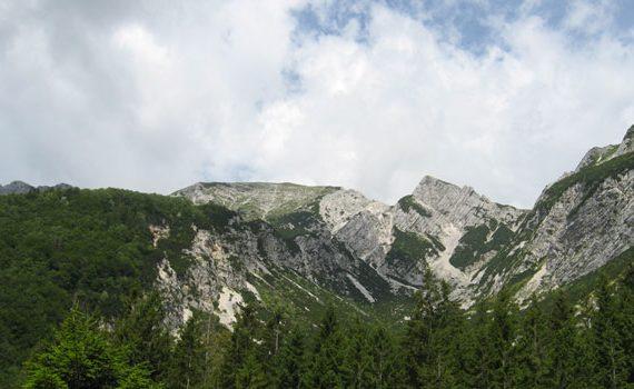 Panorama con Monte Vogel