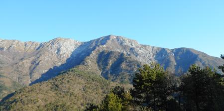 Monte Bedovet